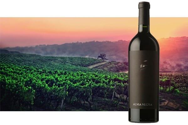 imagem vinho alma negra