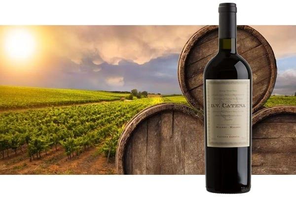 imagem vinho catena